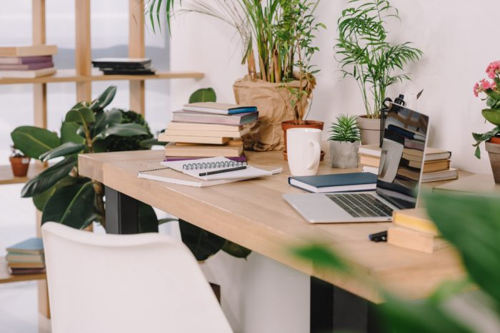 Plants in the Workplace